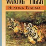 Walking the Tiger
